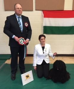 Best in Show Callendu Smooth Operator (Miss M Vickers & Mr O Bates)