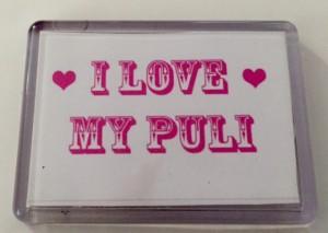 Puli magnet - Love puli