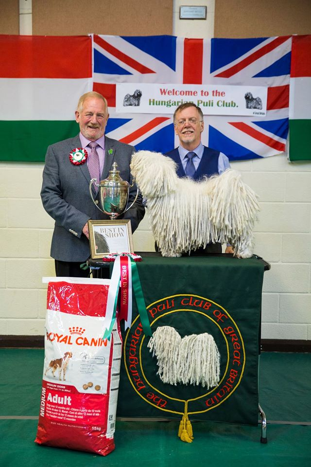 The Hungarian Puli Club GB